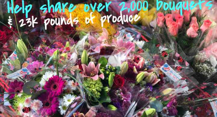 Community Solidarity shares flowers year round.