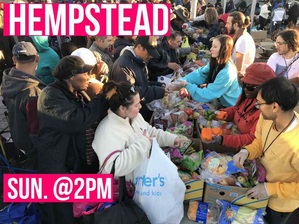 Community Solidarity Hempstead Food Share logo